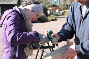 Making a Nest Box at Dorothy Clive Garden