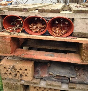 Plant pots, house bricks and slate make perfect homes for minibeasts.